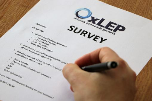 OxLEP asks company directors and business leads for their opinion