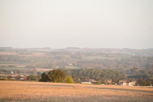 East West Railway Company launches new environmental surveys