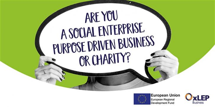Money Matters – making your purposeful business financially sustainable.